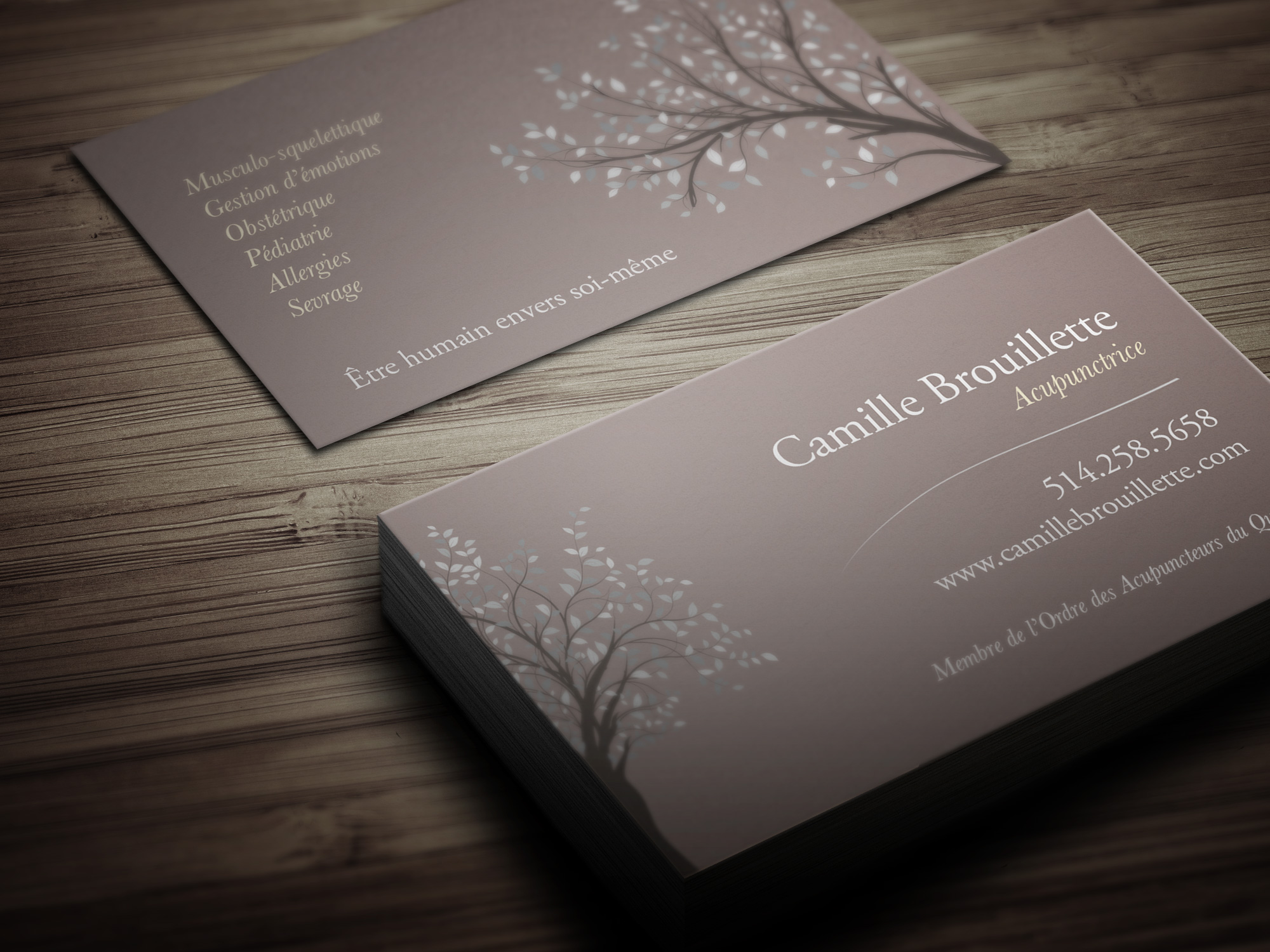 cb-cartes1